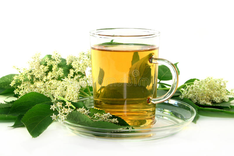 Elderflower tea. A cup of Elderflower tea with fresh flowers royalty free stock photography