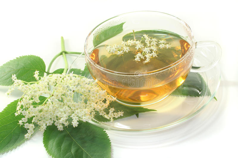 Elderflower tea. A cup of elderflower tea with a sprig of fresh flowers and leafs stock photos