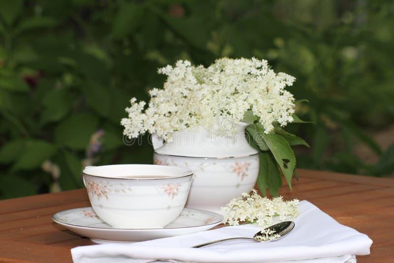 Elderflower-Tee stockbilder