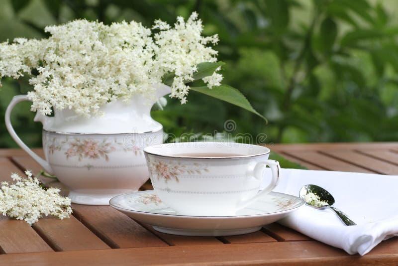 Elderflower-Tee stockfoto