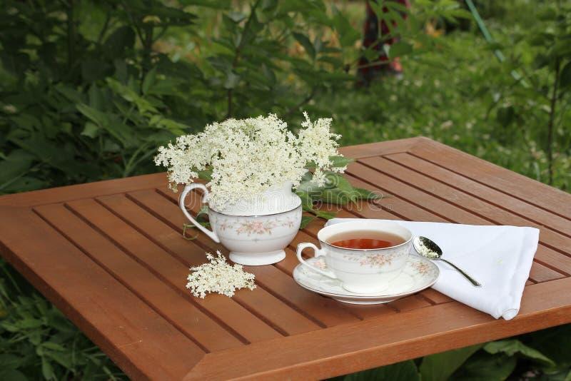 Elderflower-Tee lizenzfreies stockbild