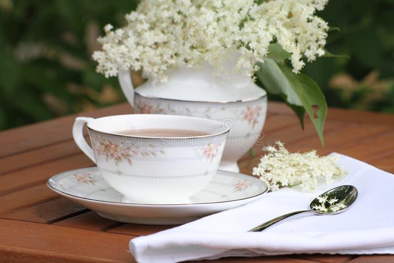 Elderflower-Tee lizenzfreie stockfotografie