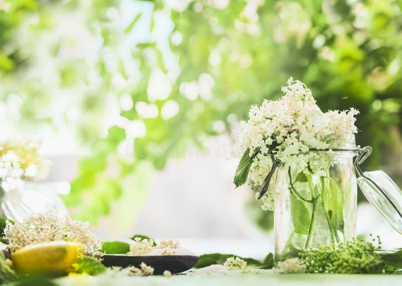 Elderflowers im Glasgefäß auf Küchentisch mit Zitrone und Zucker Selbst gemachtes elderflower, das Vorbereitung kocht Älterer Blu lizenzfreie stockbilder