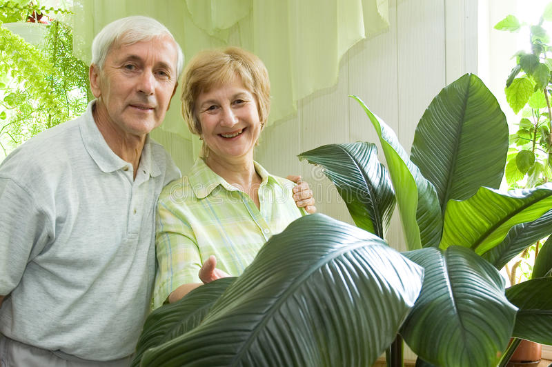 Download Elderly Couple Royalty Free Stock Photo - Image: 15784285