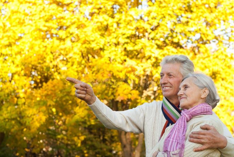 Elderly couple in a autumn park stock photo