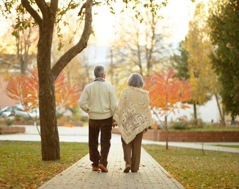 Elderly couple in autumn park. Happy elderly couple walking in autumn park royalty free stock photo