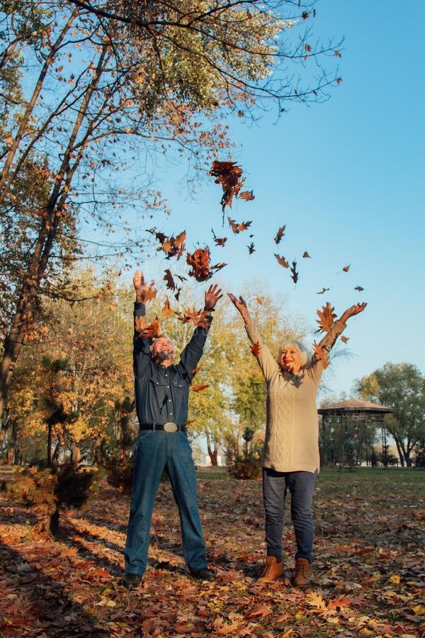 Elderly couple happily throws autumn fall leaves sitting in a park. Positive emotions of the elderly royalty free stock photography