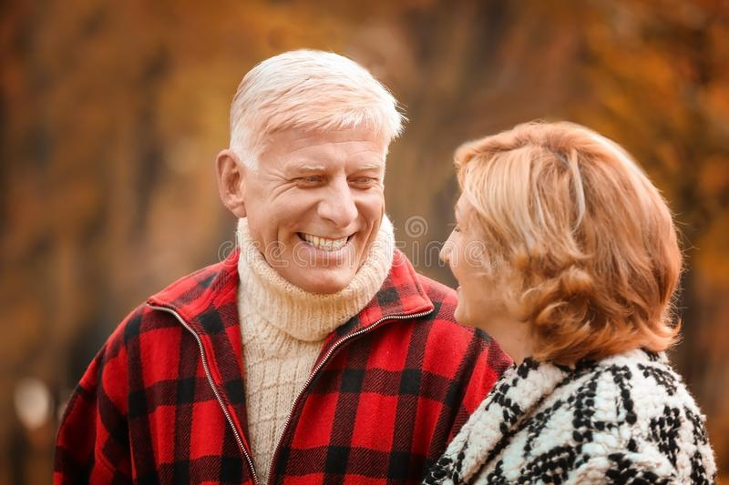 Elderly couple in park royalty free stock photos