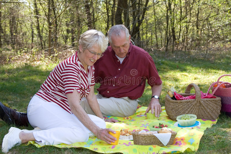 Elderly couple pic-nic royalty free stock photo