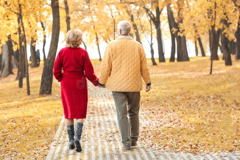 Elderly couple walking in park stock images