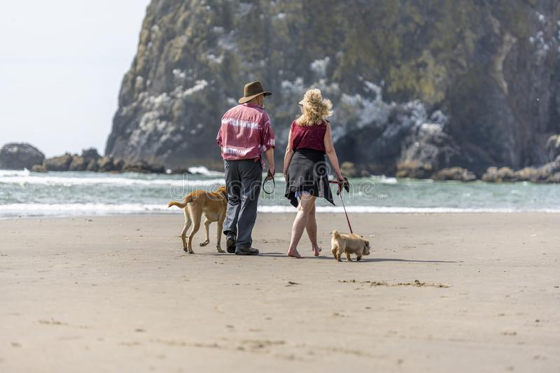 An elderly couple walking their dogs along the shore of the Northwest Pacific stock photography