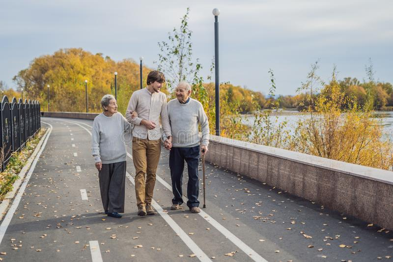 An elderly couple walks in the park with a male assistant or adult grandson. Caring for the elderly, volunteering.  royalty free stock images