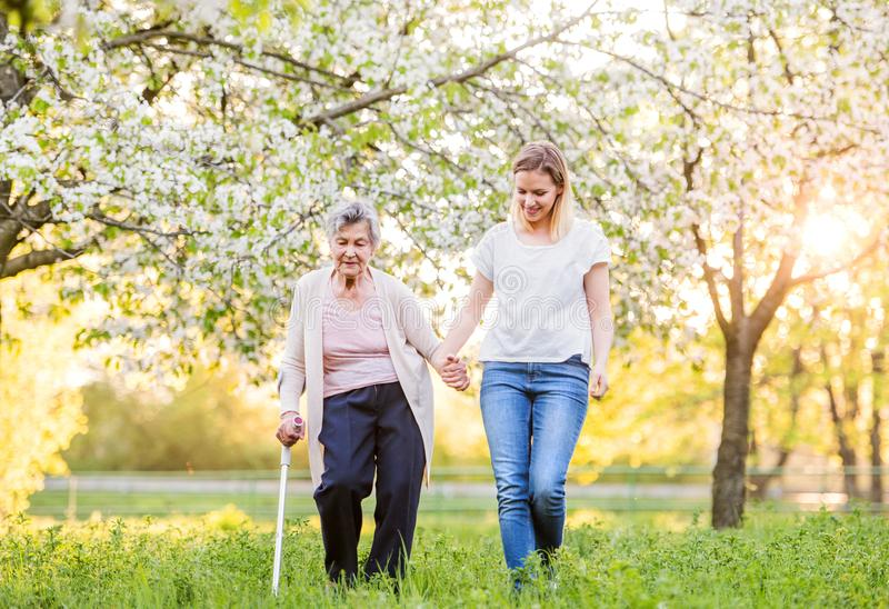 Elderly grandmother with crutch and granddaughter in spring nature. royalty free stock photos