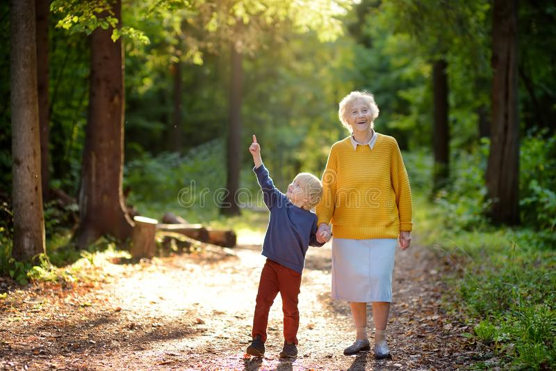 Elderly grandmother and her little grandchild walking together in sunny summer park. Grandma and grandson. Two generations of family stock photography