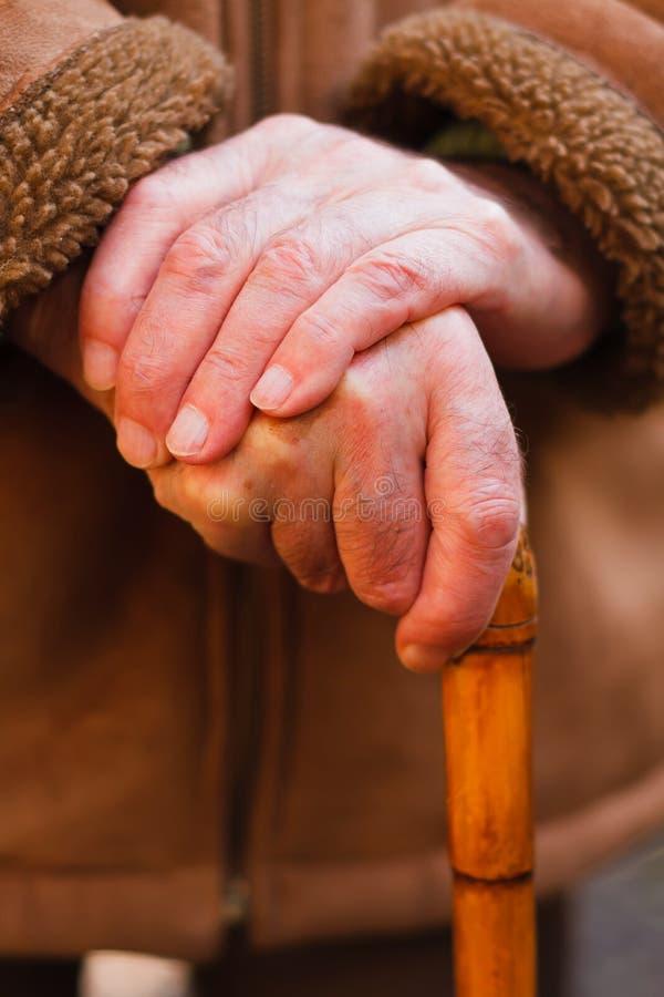Elderly hands resting on walking stick