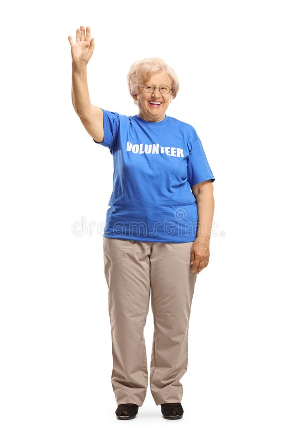 Elderly lady volunteer waving at the camera. Full length portrait of an elderly lady volunteer waving at the camera isolated on white background royalty free stock images
