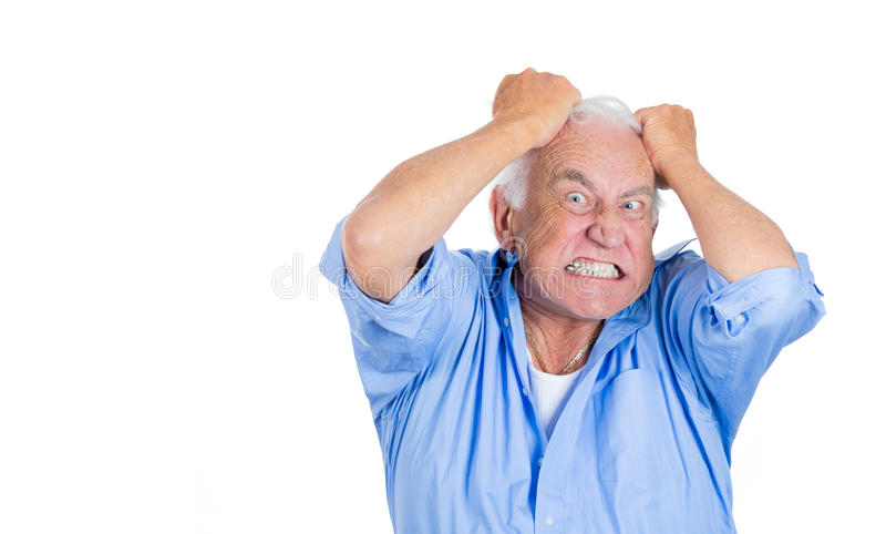 Elderly mad, crazy looking, desperate man, pulling out his hair,. A close-up portrait of an elderly mad, crazy looking, desperate man, pulling out his hair stock images