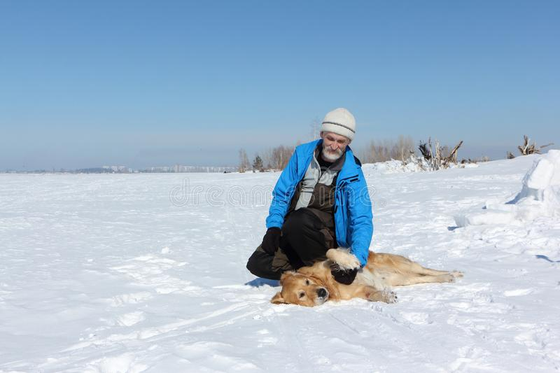 Elderly man in a blue jacket and a dog a Labrador on snow royalty free stock photos