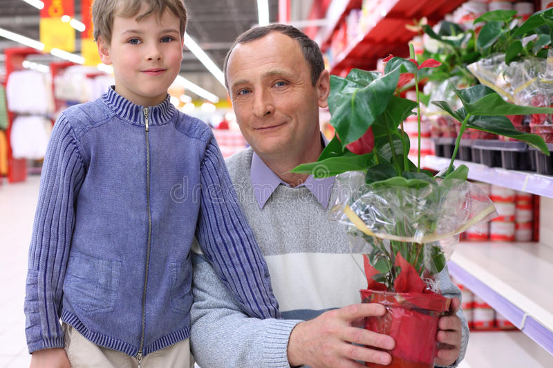 Elderly man with boy in shop with plant royalty free stock photo