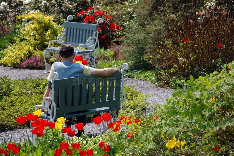 Elderly man is having a break stock image