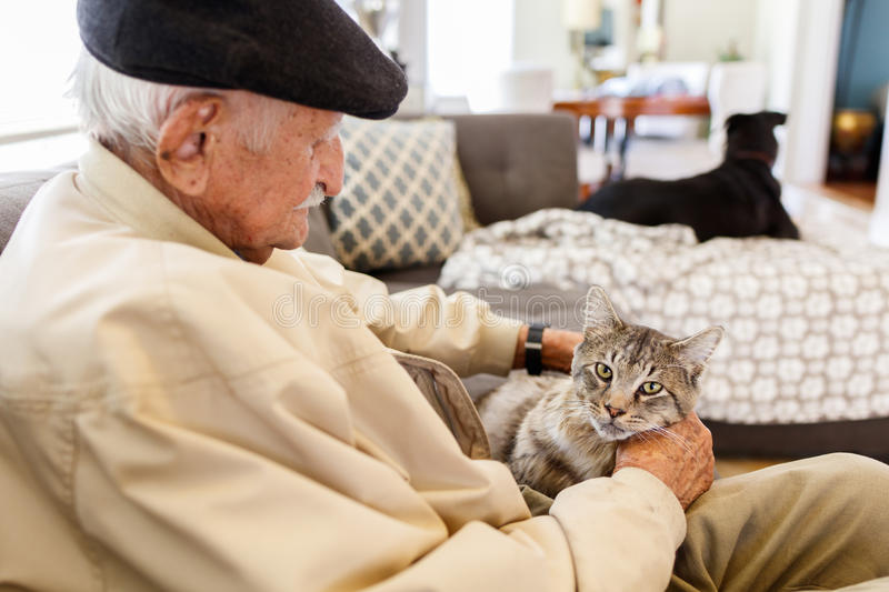 Elderly man. With his pet cat in a home setting royalty free stock photo