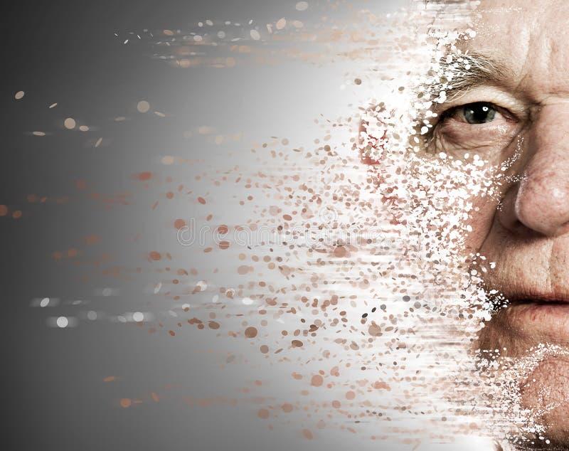 Elderly man's face falling apart royalty free stock images