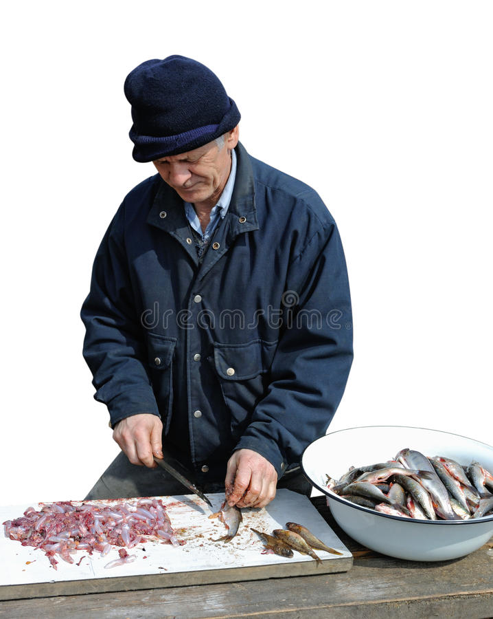 Elderly man small fish gutting royalty free stock photography