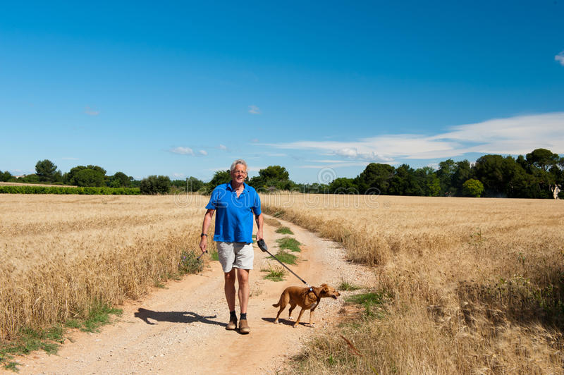 Elderly man is walking the dog. In free nature stock photo