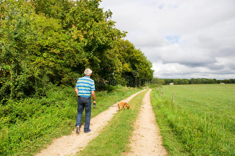 Elderly man is walking the dog stock images