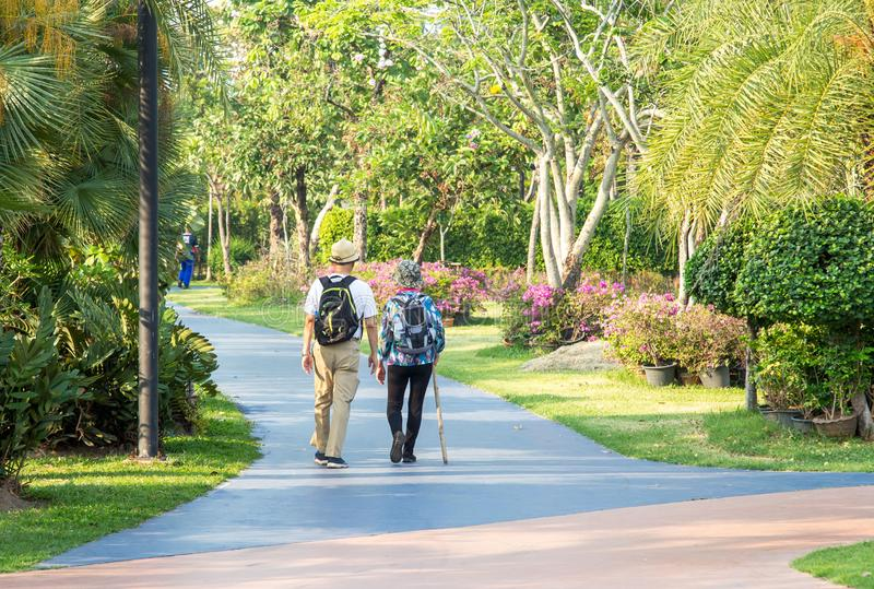 Elderly man and woman with Nordic walking sticks walk in the park stock image