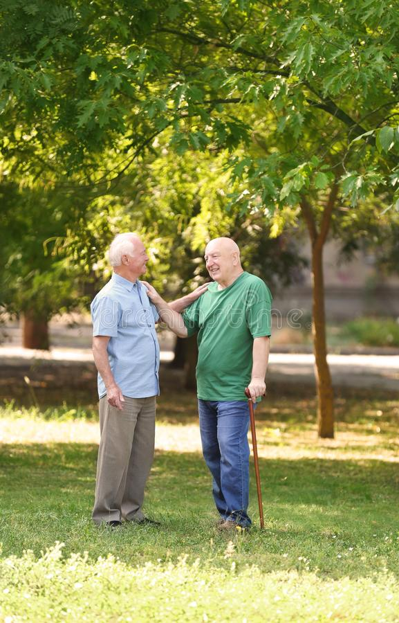 Elderly men spending time together. In park royalty free stock photography