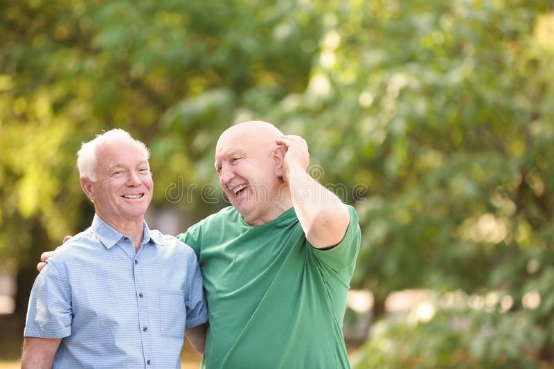 Elderly men spending time together. In park royalty free stock photos