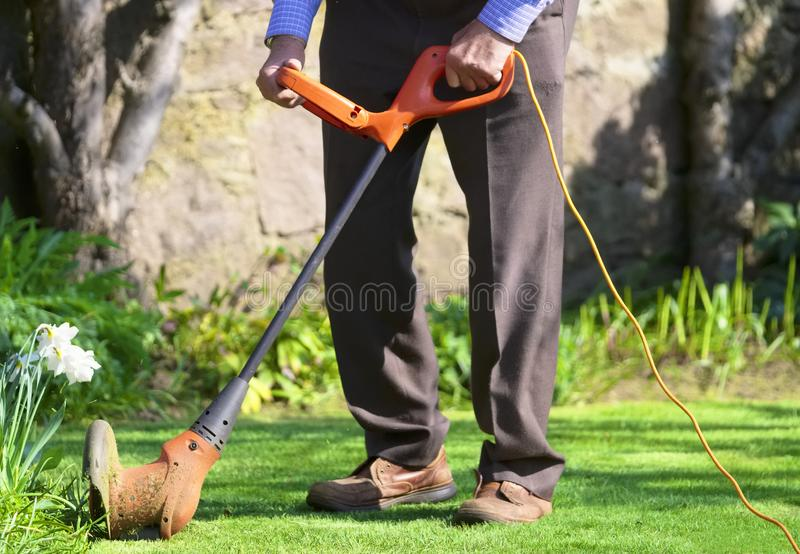 Elderly senior man cutting grass in garden and loose cable in spring sunshine summer weather detail part of active lifestyle. Uk stock images