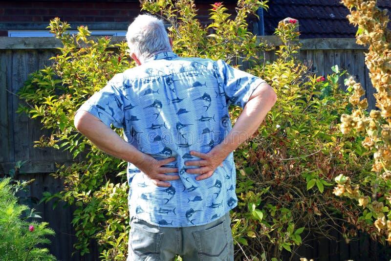 Back pain. Arthritis or sciatica. Senior in pain. Elderly or senior man holding his back because of pains. Arthritis in his joints or sciatica stock photo