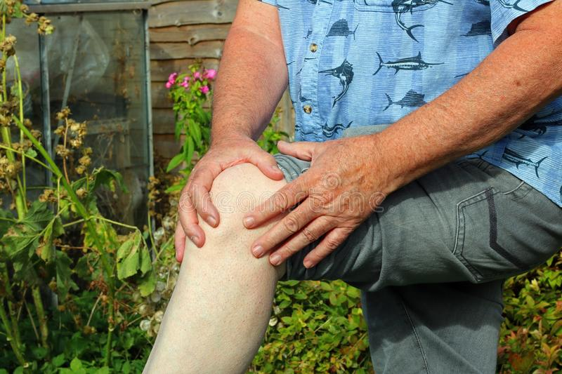Knee pain. Arthritis. Senior in pain. Elderly or senior man holding his knee because of pains. Arthritis in his joints stock photography