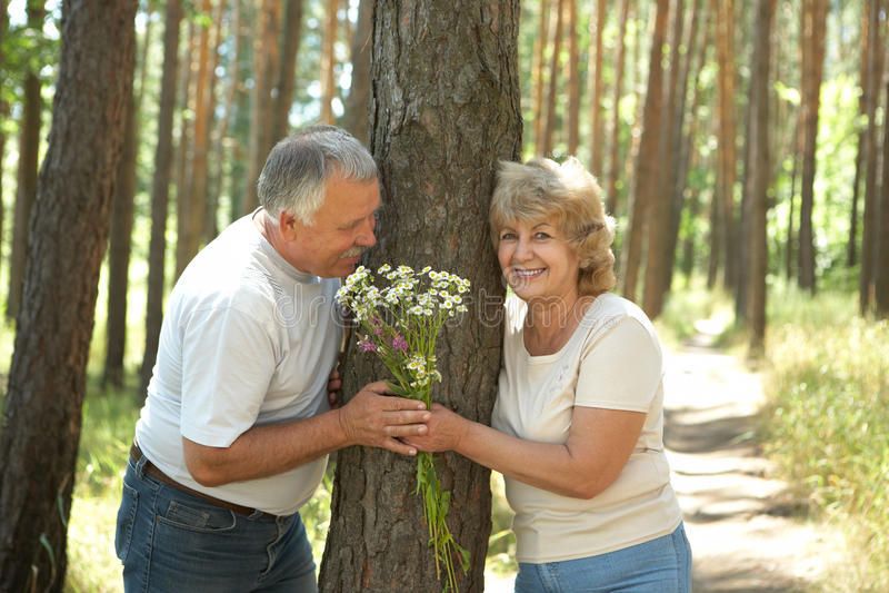 Elderly seniors couple. Happy elderly seniors couple in park royalty free stock image