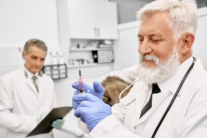 Elderly vet doctor holding needle for injection. Cheerful elderly veterinarian holding needle for injection. Doctor with gray hair and beard wearing in white royalty free stock photos