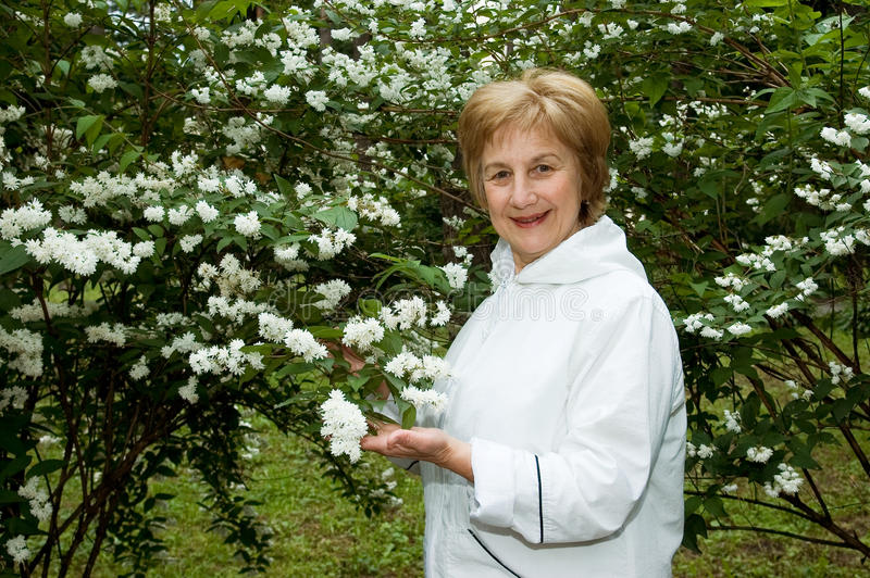 Download Elderly woman stock image. Image of blossomed, female - 15554633