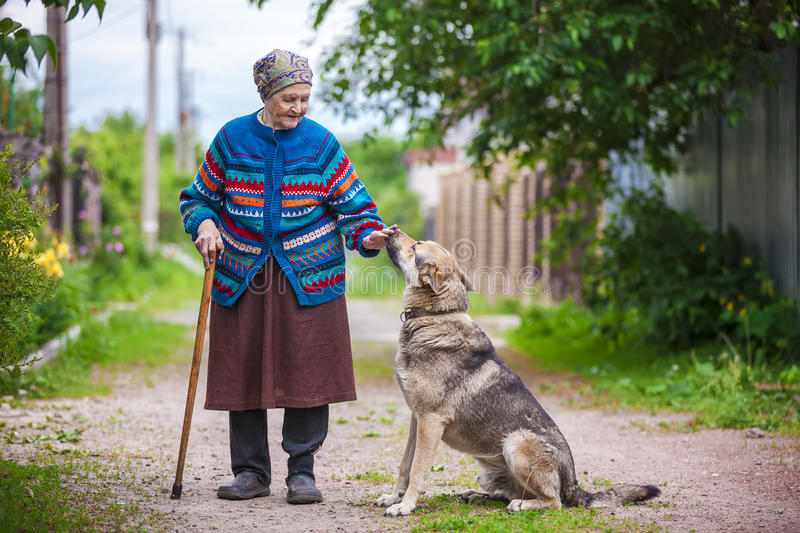 Elderly woman with a dog in countryside. In summertime stock images