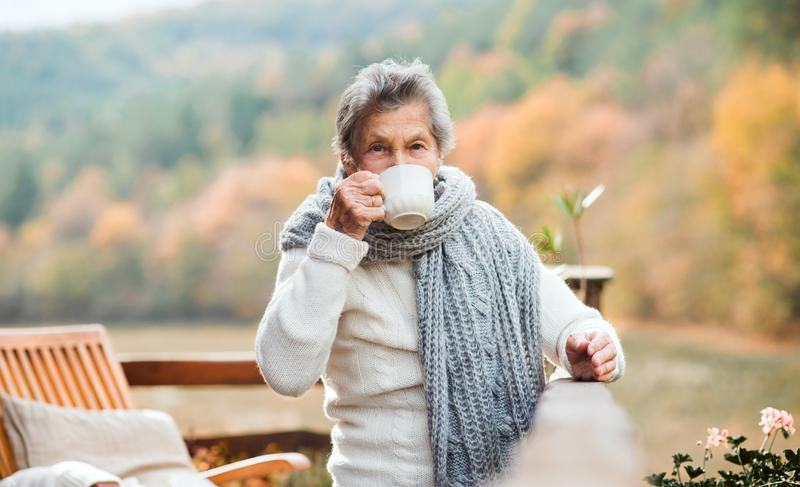 An elderly woman drinking coffee outdoors on a terrace in autumn. An elderly woman drinking coffee outdoors on a terrace in on a sunny day in autumn stock image