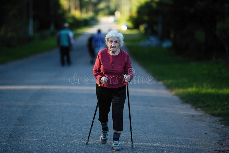 An elderly woman engaged in Nordic walking with sticks. Sport. An elderly woman engaged in Nordic walking with sticks royalty free stock images