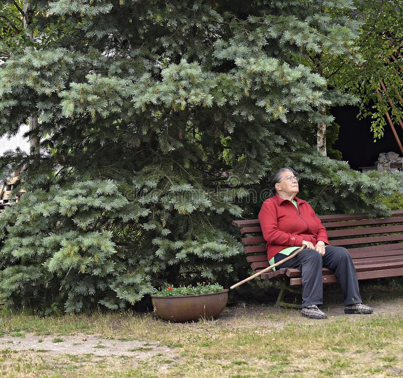 An elderly woman in the garden. An elderly woman with a cane in the garden sitting on the bench stock photography