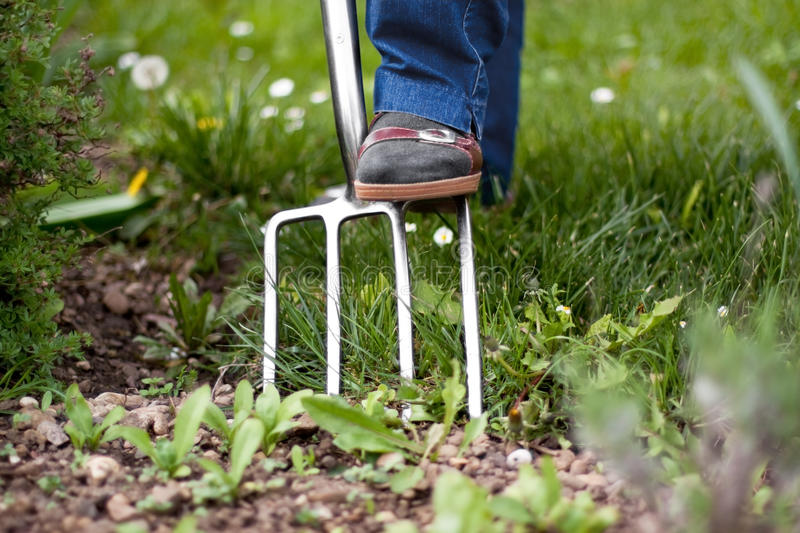 Elderly woman in the garden with pitchfork royalty free stock photography