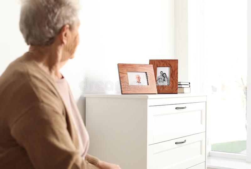 Elderly woman looking at framed family portraits royalty free stock image