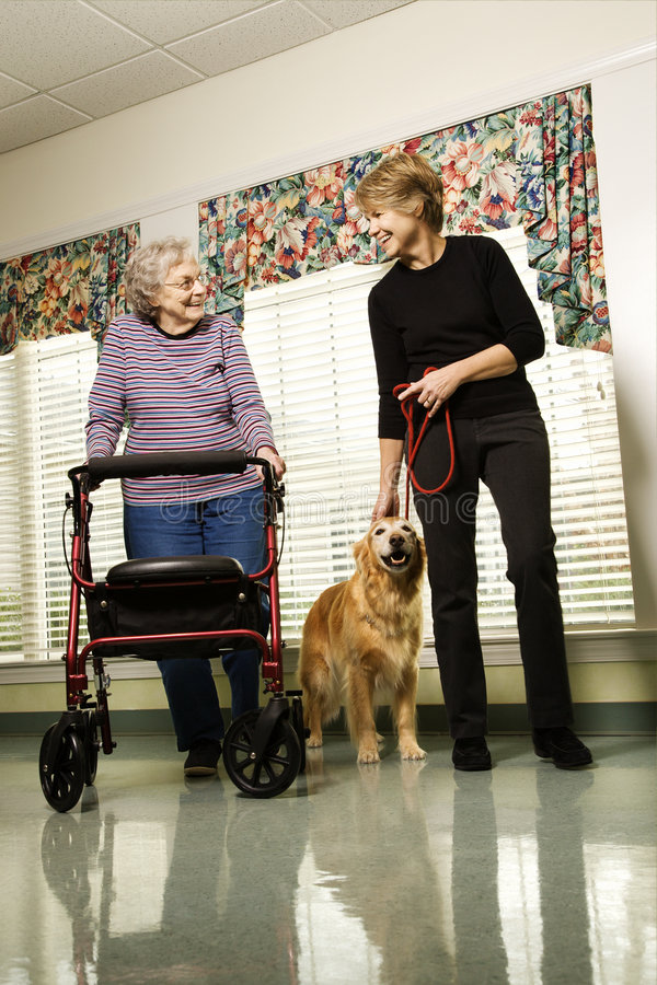Elderly woman with middle-aged woman walking dog. stock photos