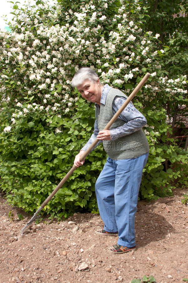 Elderly woman with rakes in hands stock photography