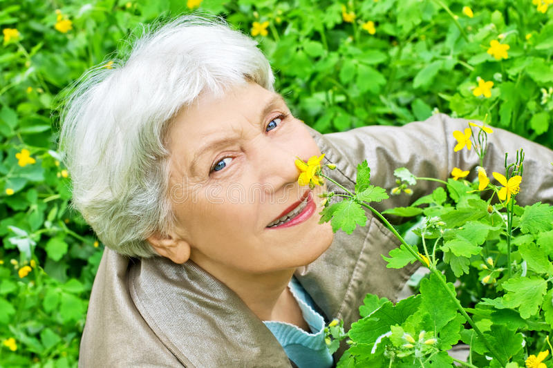 Elderly woman sitting on a glade of yellow flowers stock images