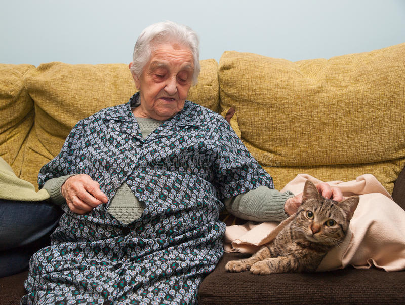 Elderly woman stroking her cat stock photography