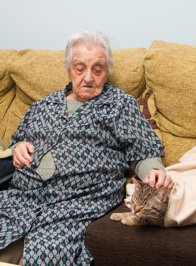 Elderly woman stroking her cat stock photos