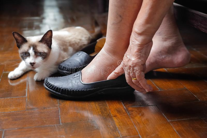 Elderly woman swollen feet putting on shoes. At home stock image